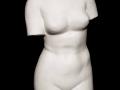 Bust of Venus 1